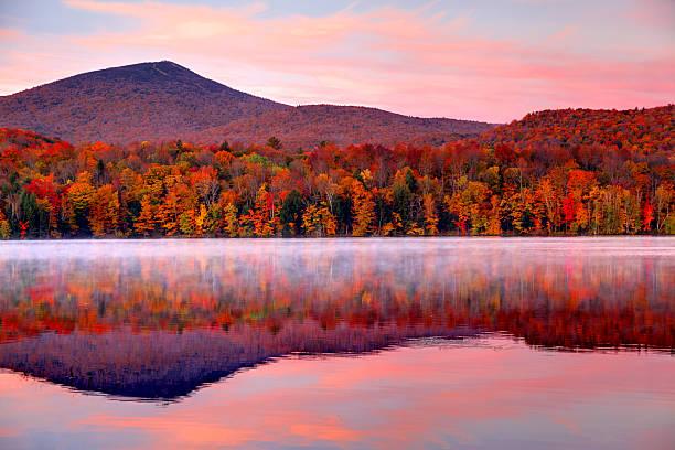 automne dans le vermont - feuillage automnal photos et images de collection
