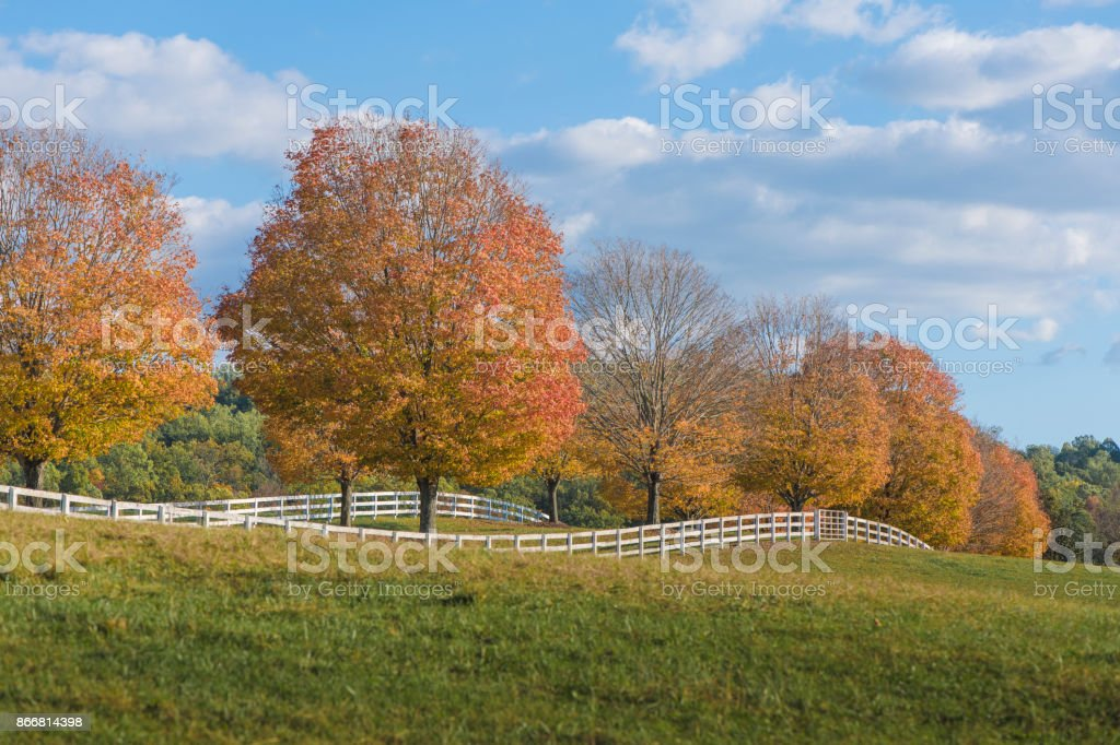 Herbst in Virginia – Foto