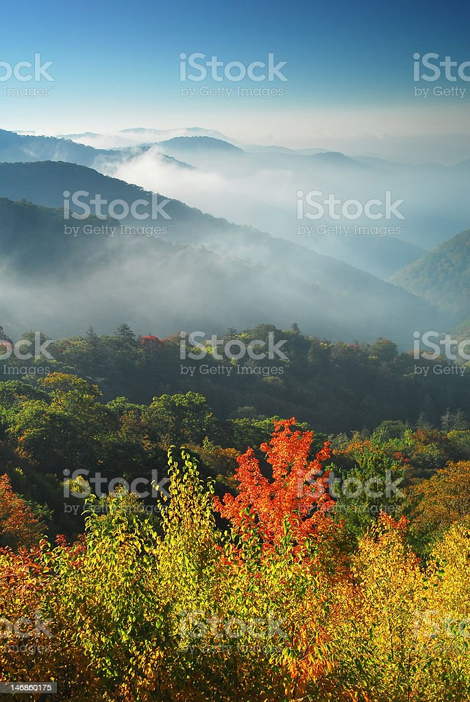 Autumn is Coming royalty-free stock photo