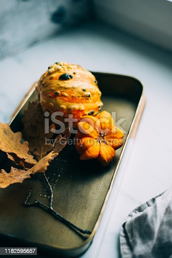 Autumn is coming. small yellow pumpkin and yellow leaves