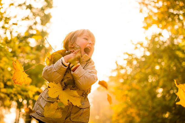 Autumn is great time stock photo