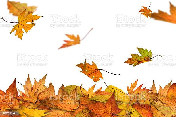 Photo of Autumn is here