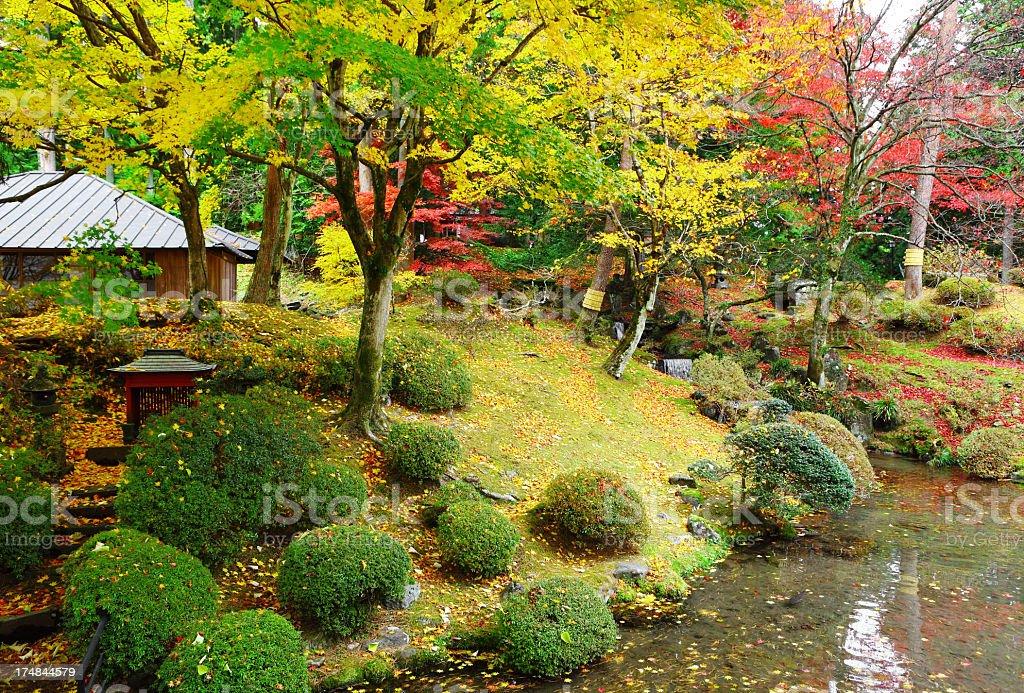 autumn japan garden royalty-free stock photo