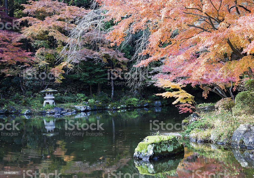 Autumn Japanese Garden royalty-free stock photo