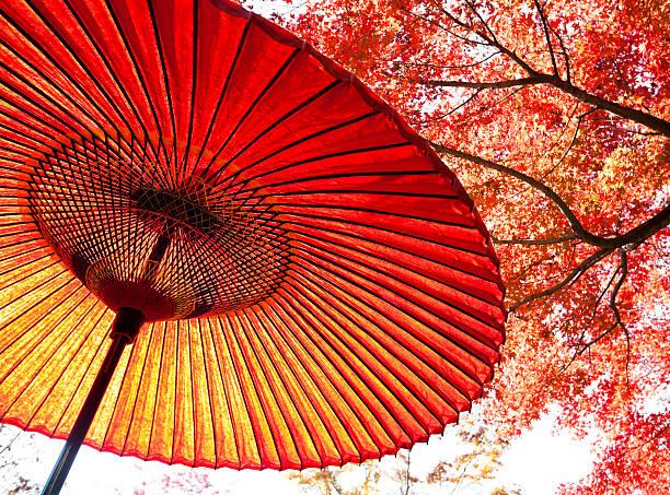 Autumn Japanese Umbrella stock photo