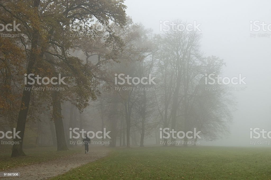 Autumn Jogging royalty-free stock photo