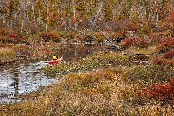Autumn Kayaker stock photo