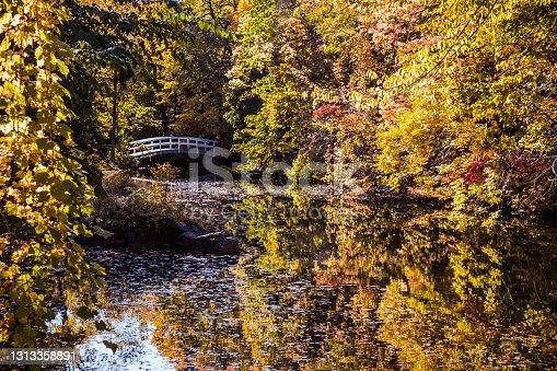 istock Autumn Lake 1-4 1313358891
