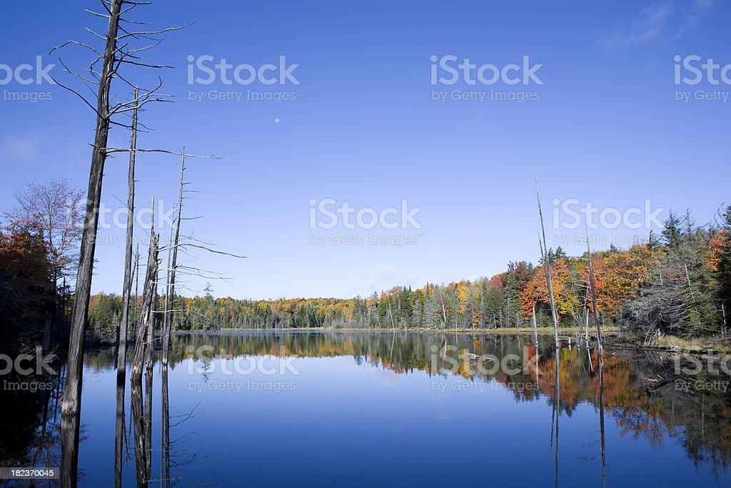 Autumn Lake royalty-free stock photo