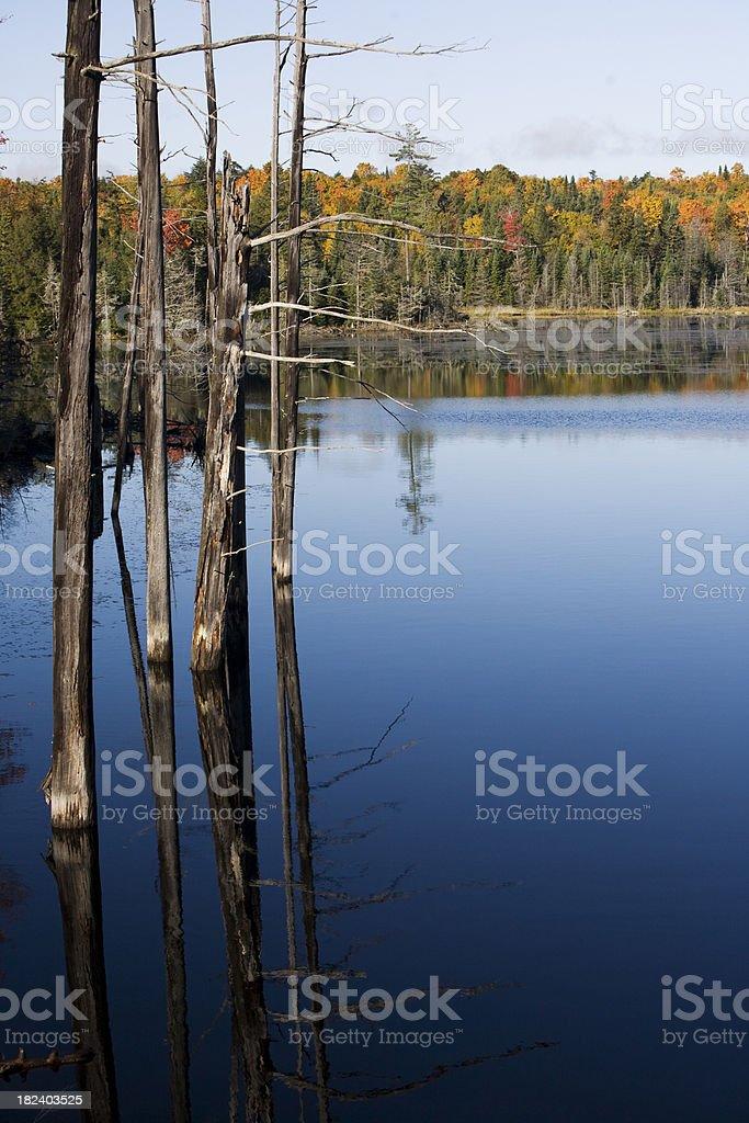 Autumn Lake stock photo