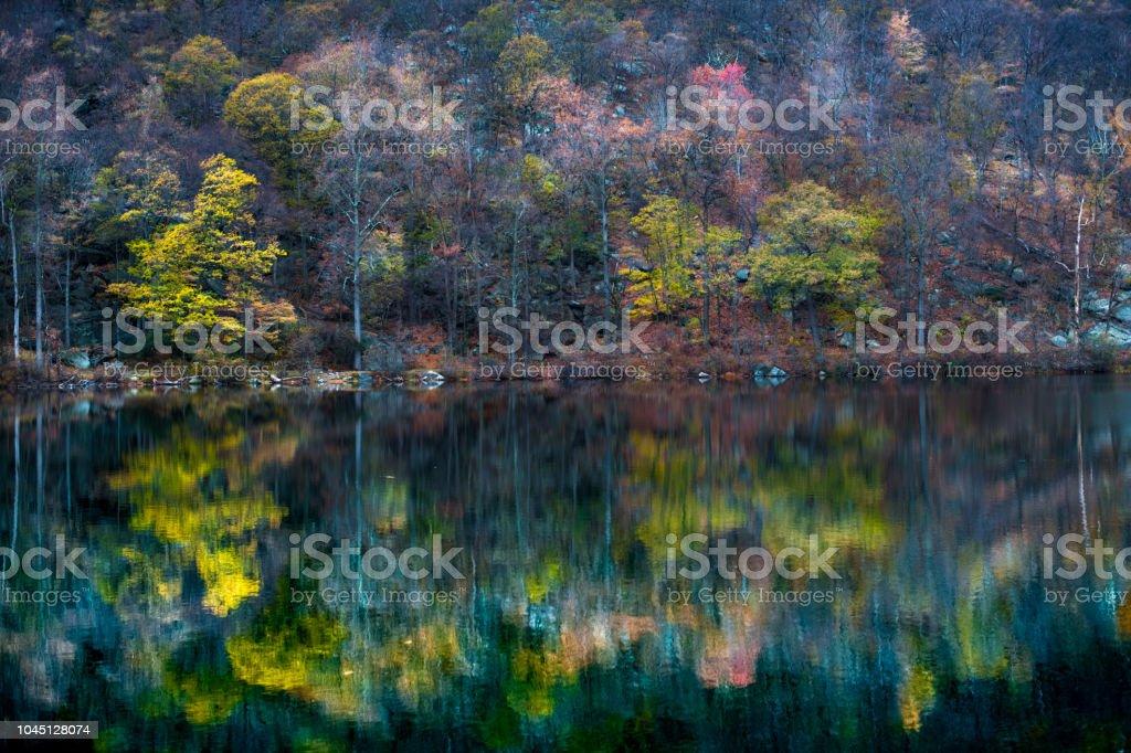 Autumn Lake Reflection stock photo