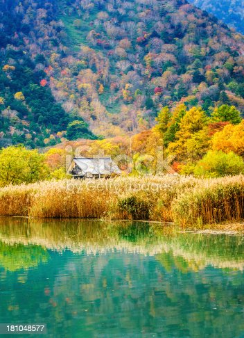 View on reeds, hut and the beautiful lake of Yunoko with autumn reflection. The lake is fed by sulphur hot springs giving him a magic green color.