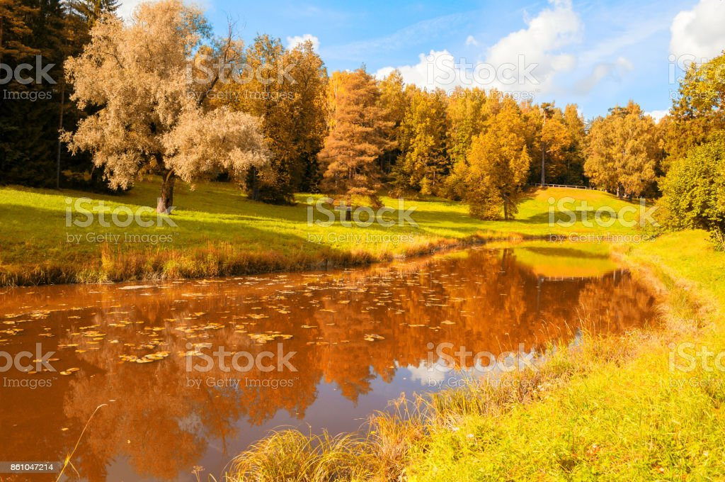 Autumn landscape. Autumn trees at the bank of the river stock photo