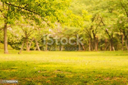 639809128istockphoto Autumn Landscape blurred abstract background 1179695804