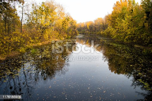 Autumn landscape. Calm river surface reflecting autumn colorful trees. Beautiful autumn background copy space. Wanderlust concept. Autumn forest. Nature ecology environment. Tranquil water.