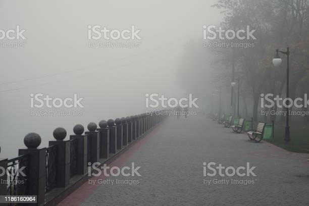 Photo of autumn landscape, fog over the river, yellow leaves