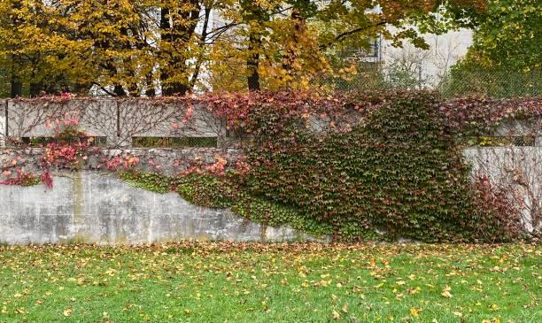 Herbstlandschaft in Deutschland – Foto