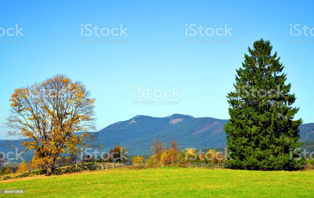 Autumn landscape in National park Bavarian forest, Germany. stock photo