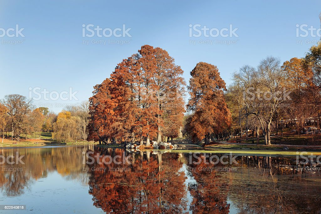 Autumn Landscape in the park from Craiova, Romania stock photo