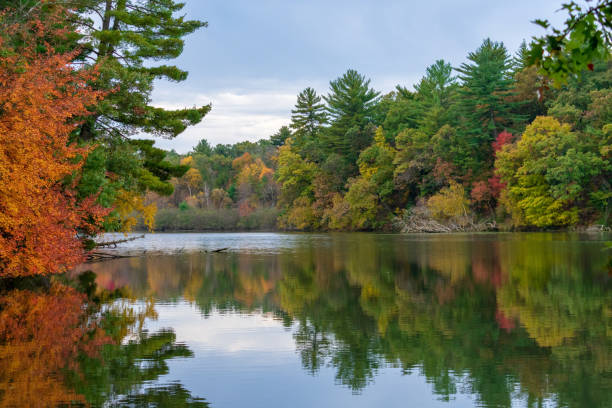 Autumn landscape - lake and fall colors Vibrant fall colors reflected in calm lake wisconsin stock pictures, royalty-free photos & images