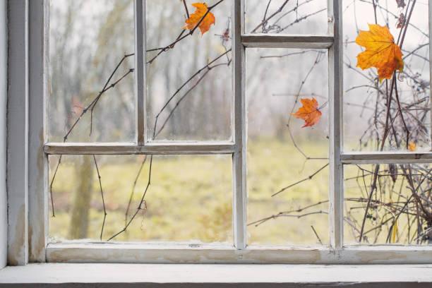 autumn landscape on old window stock photo