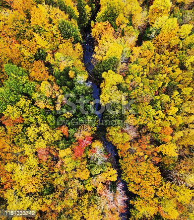 Aerial drone view of Autumn colours in Nova Scotia.