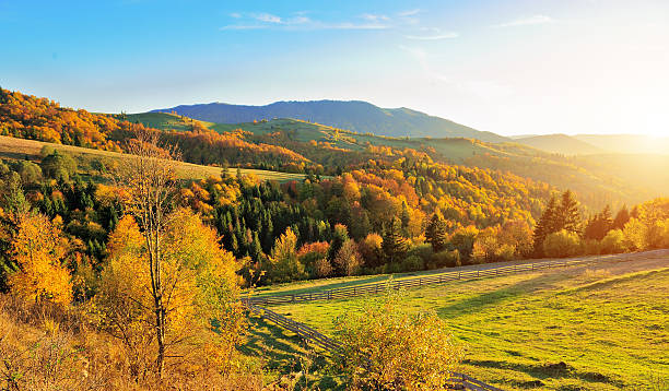 Autumn landscape Mountain autumn landscape with colorful forest steamboat springs stock pictures, royalty-free photos & images