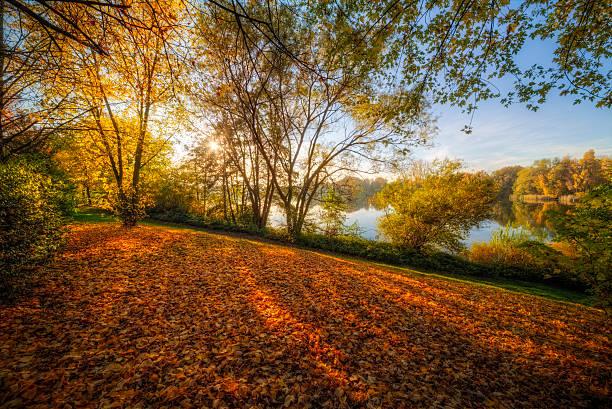 Herbst Landschaft – Foto