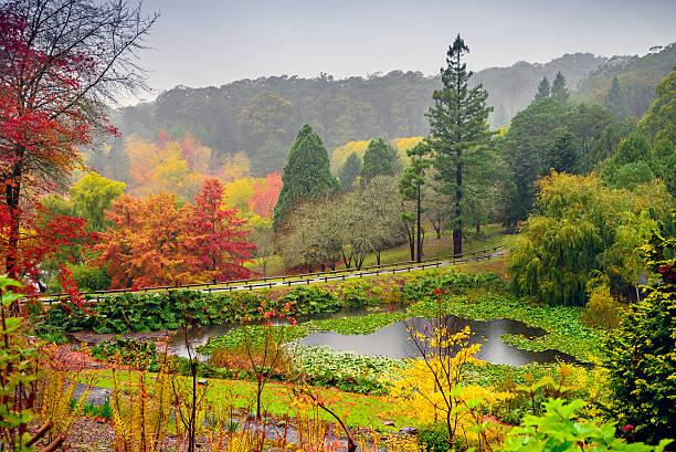 Herbst-Landschaft im Regen – Foto