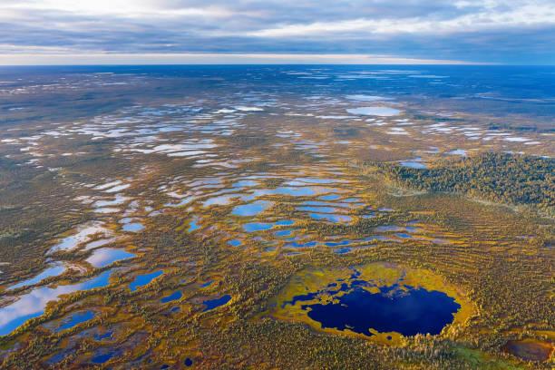 herfst landschap. west-siberische vlakte. - siberië stockfoto's en -beelden