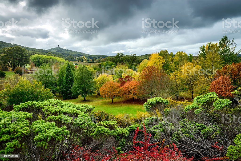 Autumn landscape with colourful trees stock photo