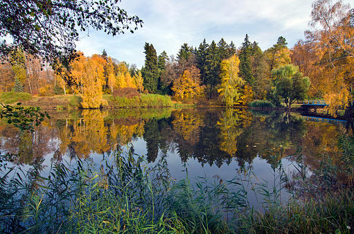 istock Autumn landscape with lake. 1150332083