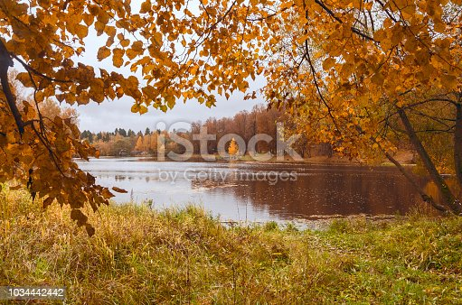 istock Autumn landscape with pond in the park on a rainy cloudy day.Trees with yellow foliage in the forest. 1034442442