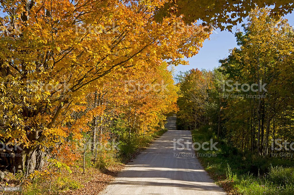 Autumn Lane royalty-free stock photo