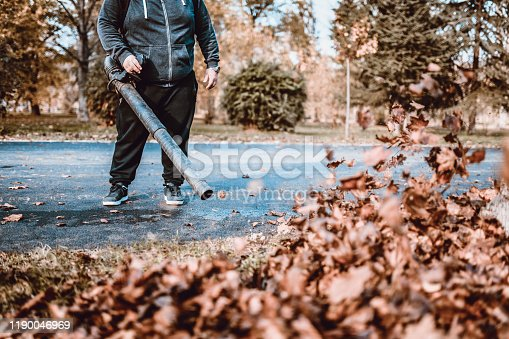 Autumn Leaf Cleaning In Park