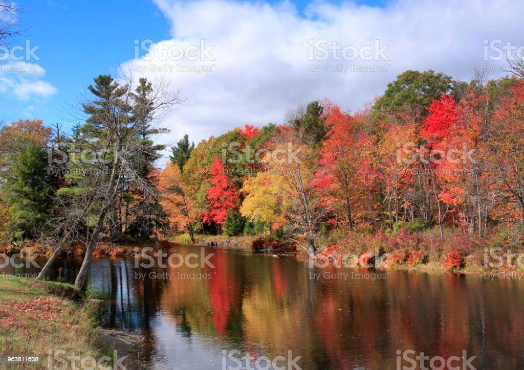 Colores de otoño hoja por Skootamatta Rive - foto de stock