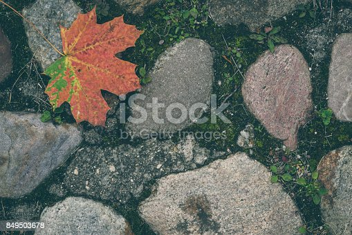 istock Autumn leaf on old stones 849503678