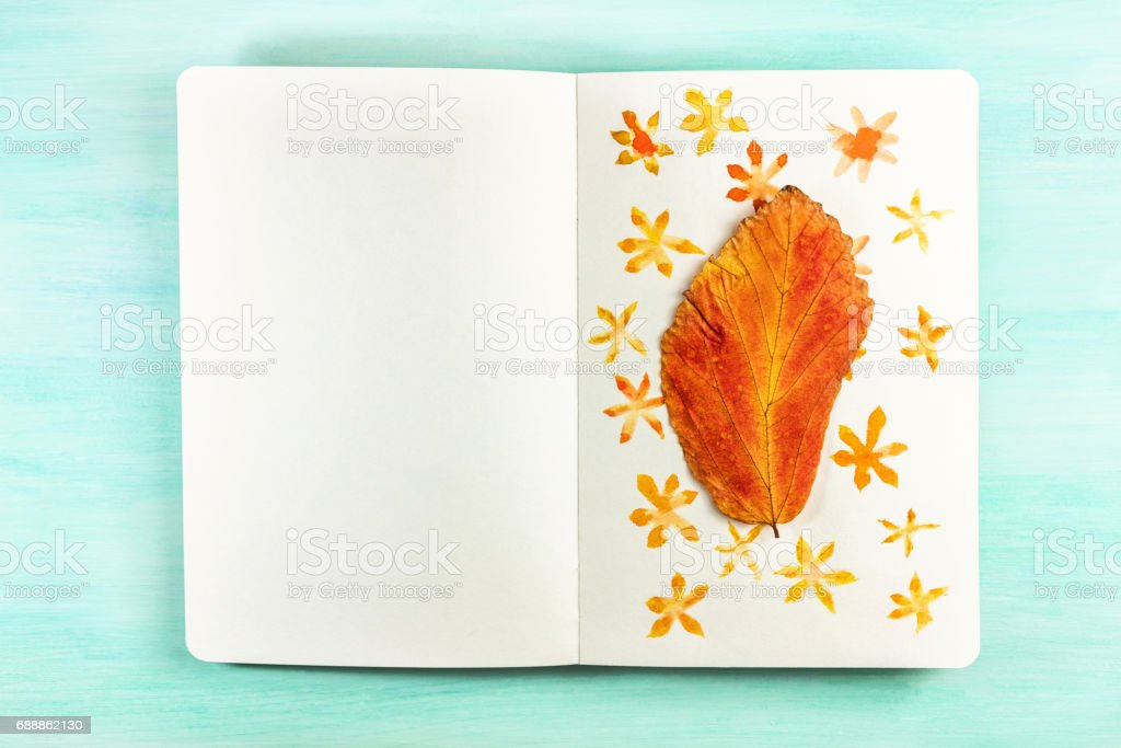 Autumn leaf taped to notebook page with watercolor drawings stock photo