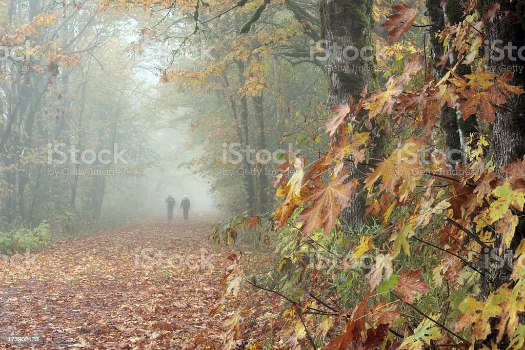 Autumn Leaf Walkers royalty-free stock photo
