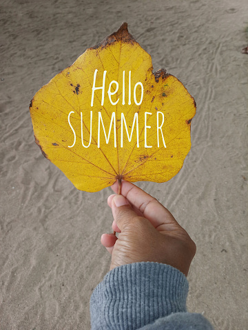 istock Autumn leaf welcoming summer 1153941326