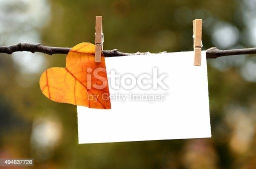 istock Autumn leaf with card 494637726