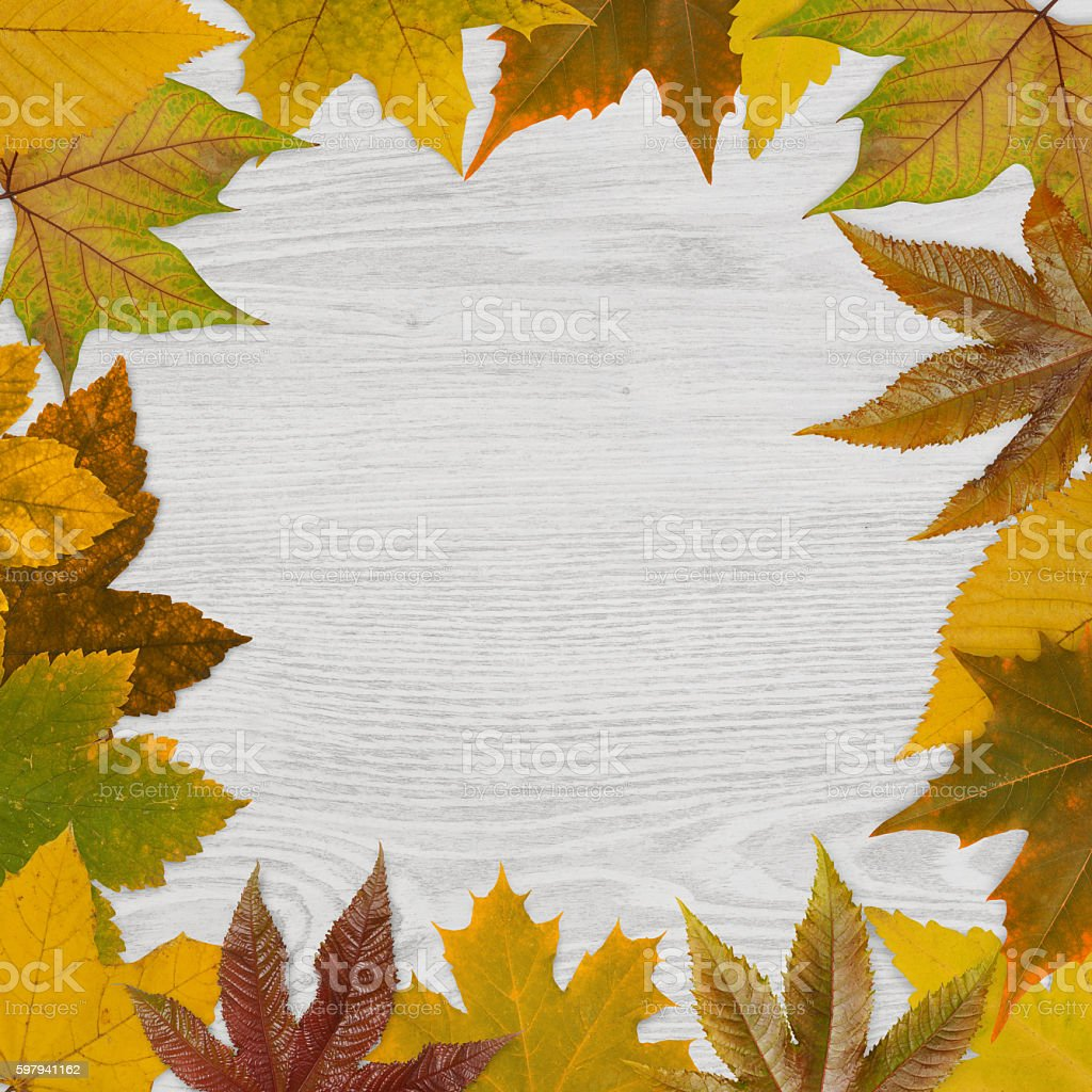 Autumn leafs frame on wood foto royalty-free