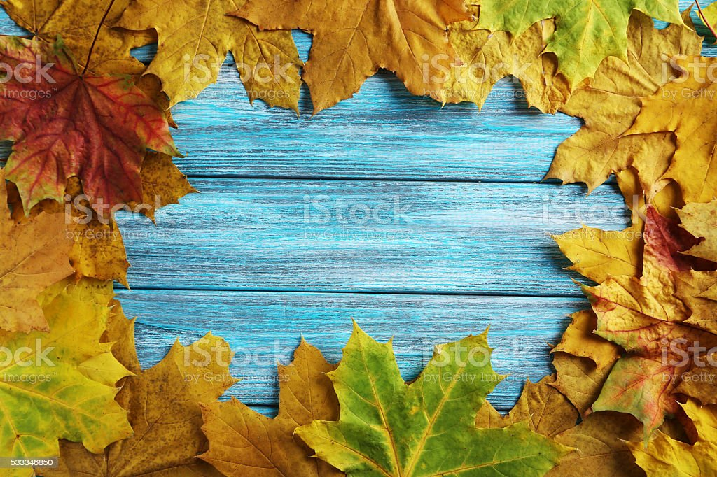 Autumn leafs on a blue wooden table stock photo