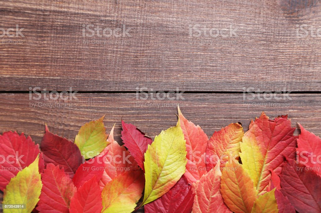 Autumn leafs on brown wooden table royalty-free stock photo