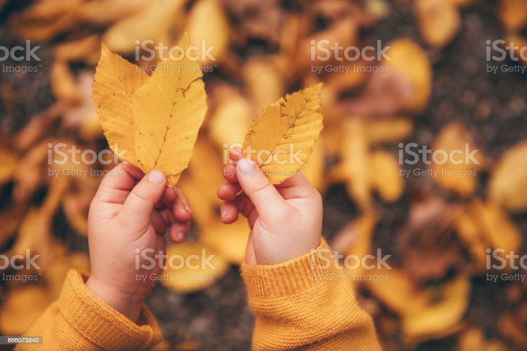 Herbst Urlaub im kleinen Buben-Hand, selektiven Fokus – Foto