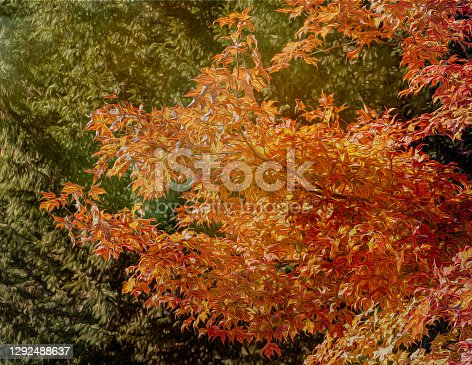 istock Autumn Leaves Abstract 1292488637