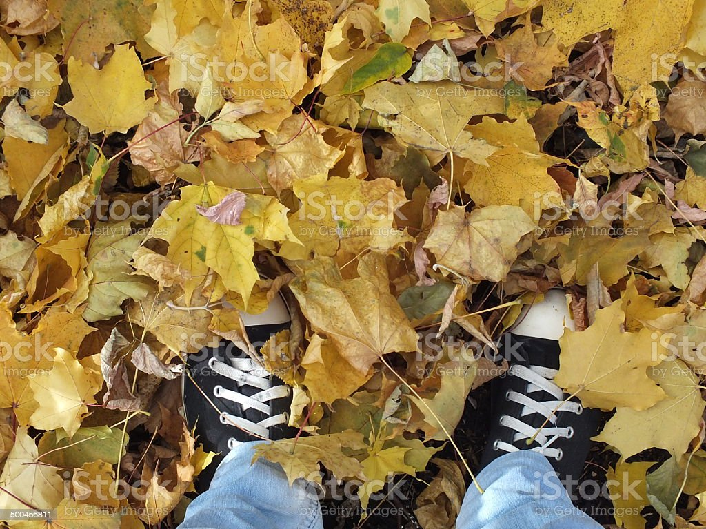 autumn leaves and feet royalty-free stock photo