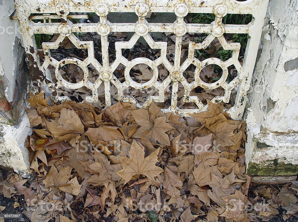 Autumn leaves and gate royalty-free stock photo