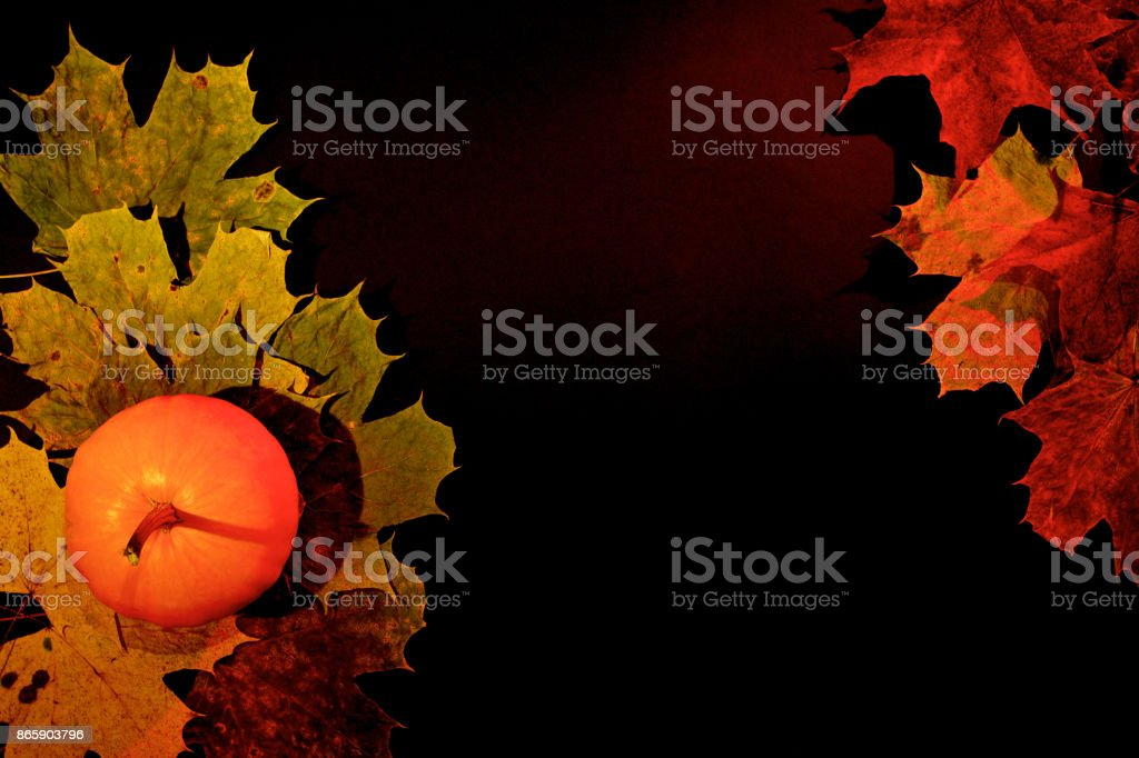 Autumn leaves and pumpkin on dark background stock photo
