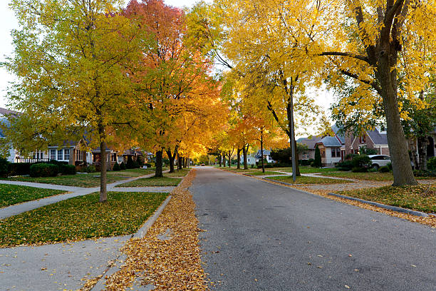 Autumn leaves and residential street stock photo